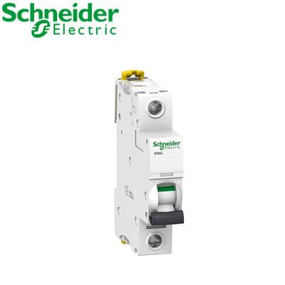 Aptomat tự động Schneider 1P A9F94106