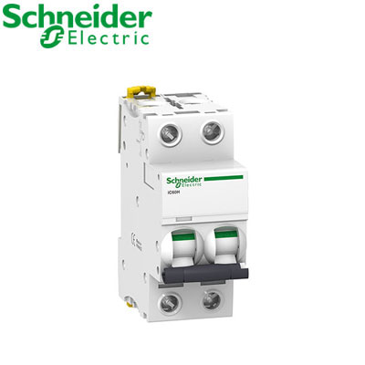 Aptomat tự động Schneider 2P A9F94206