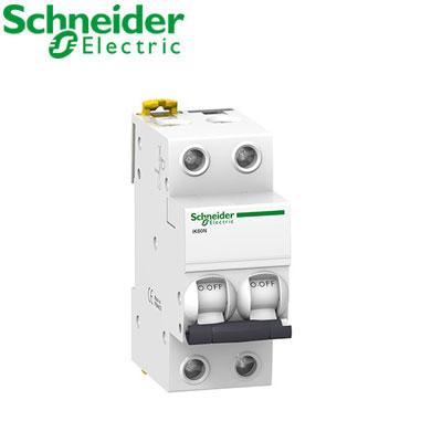 Aptomat 2P (MCCB) Schneider A9K27206