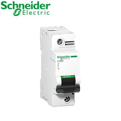 Aptomat tự động Schneider 1P A9N18356