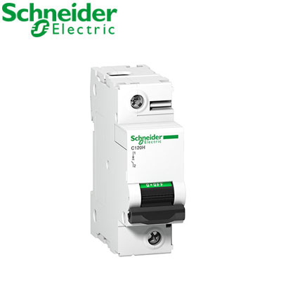 Aptomat tự động Schneider 1P A9N18445