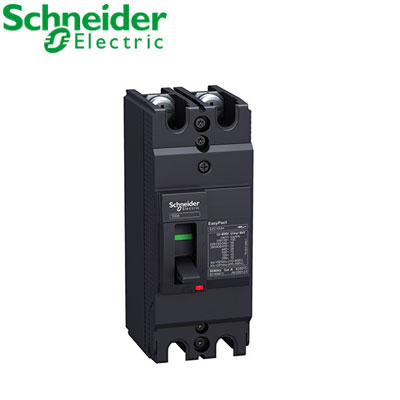 Aptomat (MCCB) Schneider EZC100H2100
