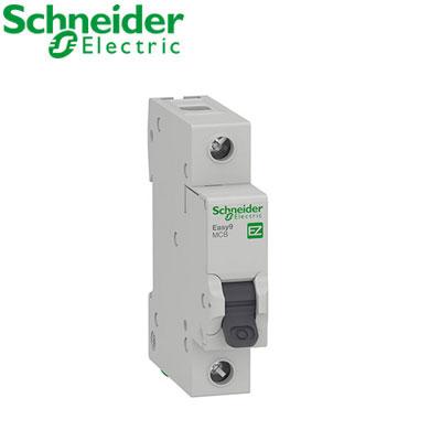 Aptomat 1P (MCCB) Schneider EZ9F34106