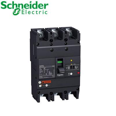 Aptomat(ELCB) Schneider EZCV250N3250