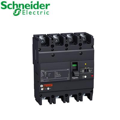 Aptomat(ELCB) Schneider EZCV250H4250