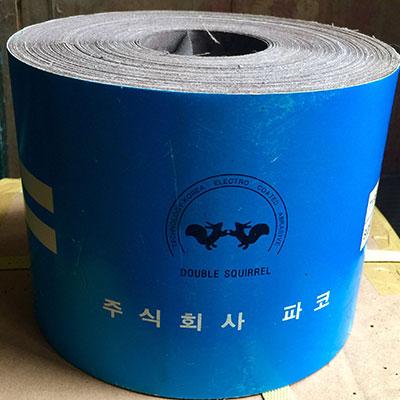Nhám cuộn con Sóc Hàn Quốc