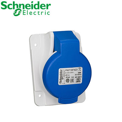 Ổ cắm gắn âm Schneider 2P PKF16F423