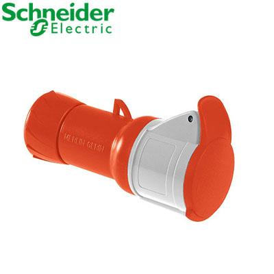 Ổ cắm nối Schneider 4P PKF16M435